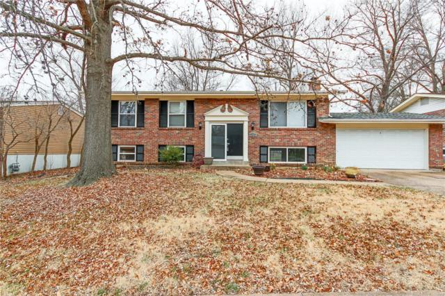 1135 Villaview Drive, Manchester, MO 63021 (#18015231) :: RE/MAX Vision