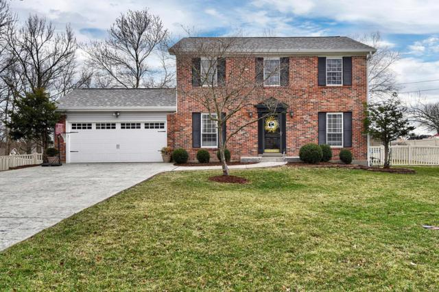 225 Greiner Court, Ellisville, MO 63021 (#18016093) :: The Kathy Helbig Group