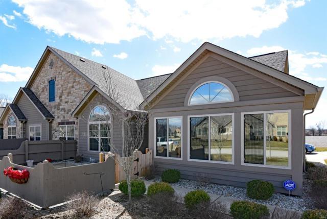 1077 Chapel Hill Drive, O'Fallon, IL 62269 (#18016703) :: Clarity Street Realty