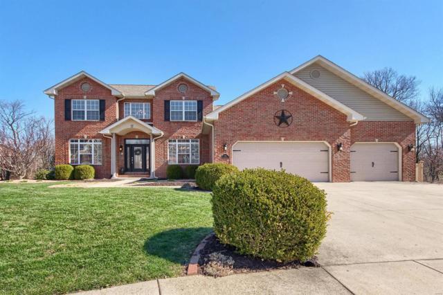 1178 Red Hawk Ridge Lane, O'Fallon, IL 62269 (#18018158) :: Clarity Street Realty