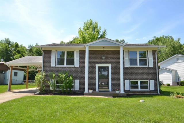 1482 Pajaro Court, Fenton, MO 63026 (#18018169) :: PalmerHouse Properties LLC