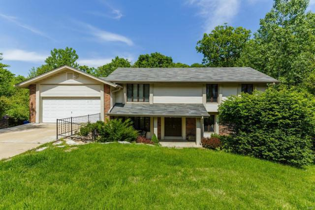 12441 Cross Green, Creve Coeur, MO 63141 (#18018452) :: RE/MAX Vision