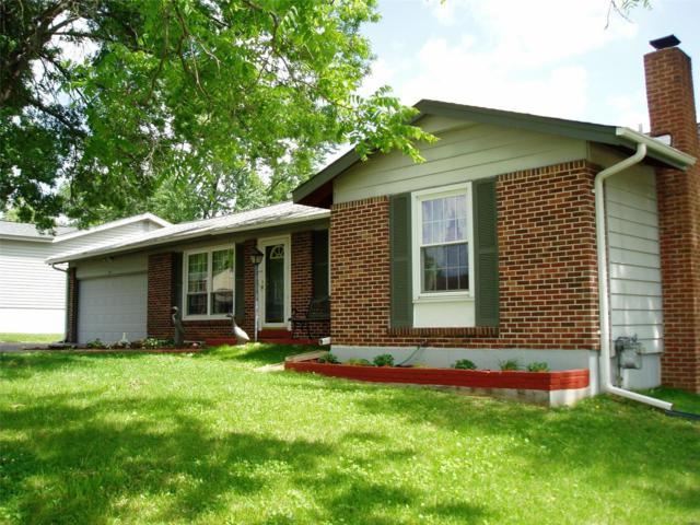 2019 Novem Drive, Fenton, MO 63026 (#18018632) :: PalmerHouse Properties LLC
