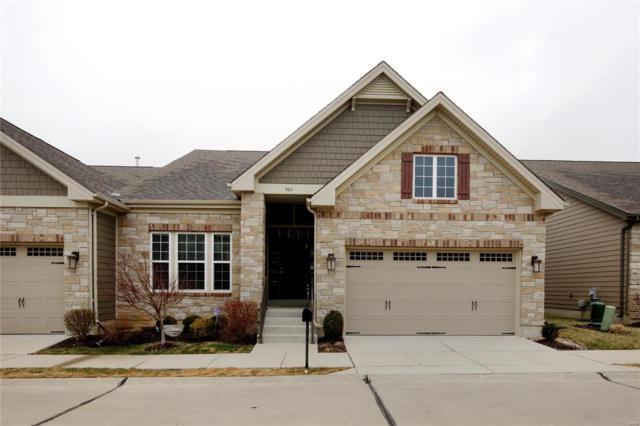 560 Trevi Lane, Ballwin, MO 63011 (#18018664) :: PalmerHouse Properties LLC