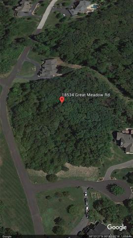 18534 Great Meadow Road, Wildwood, MO 63038 (#18018723) :: Kelly Hager Group | Keller Williams Realty Chesterfield