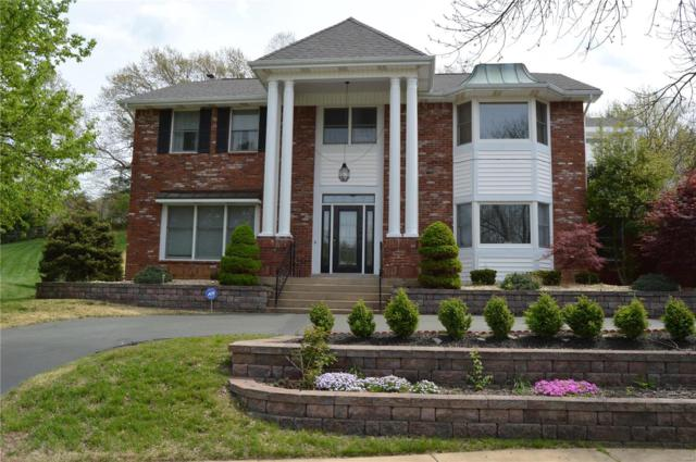 1284 Tammany Lane, Town and Country, MO 63131 (#18018818) :: RE/MAX Vision