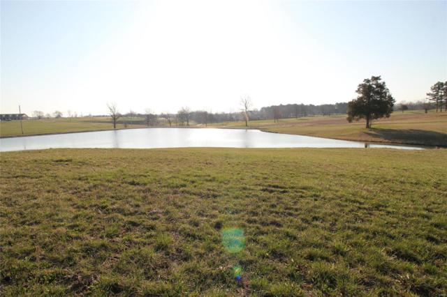 0 Fairway Court, Ste Genevieve, MO 63670 (#18018861) :: Holden Realty Group - RE/MAX Preferred
