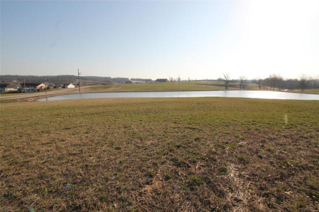 0 Fairway Court, Ste Genevieve, MO 63670 (#18018873) :: Holden Realty Group - RE/MAX Preferred