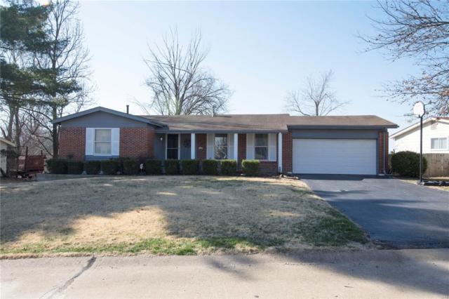1108 Wrought Iron Lane, Ballwin, MO 63011 (#18020228) :: PalmerHouse Properties LLC