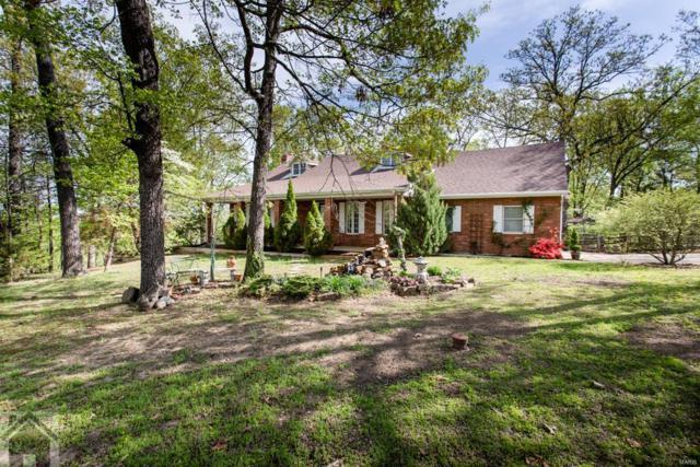 17051 Lemming Lane, Saint Robert, MO 65584 (#18020408) :: Walker Real Estate Team