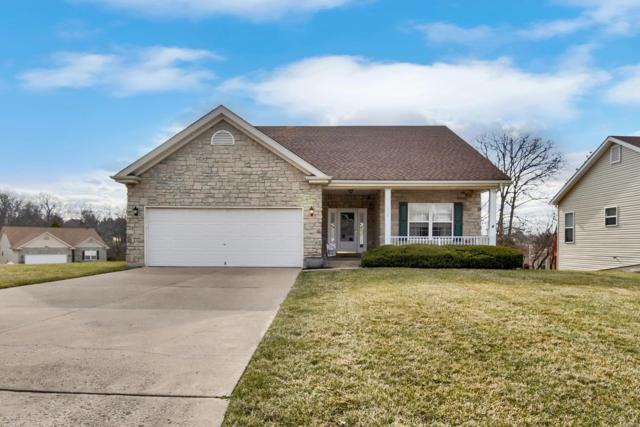 213 Fiddlecreek Ridge Road, Wentzville, MO 63385 (#18020870) :: RE/MAX Vision