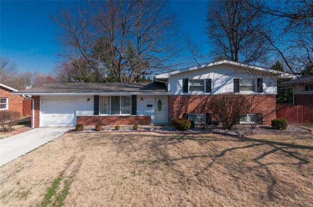 221 Dorchester Drive, Belleville, IL 62223 (#18021202) :: Fusion Realty, LLC
