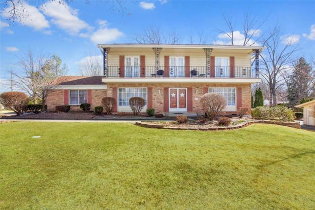 172 High Valley Drive, Chesterfield, MO 63017 (#18022413) :: RE/MAX Vision