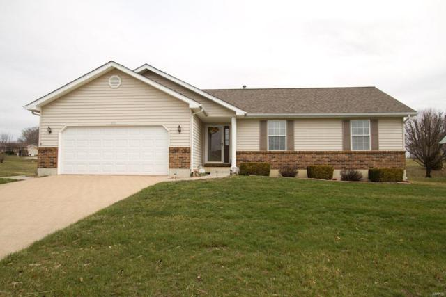 109 Excalibur Boulevard, Troy, MO 63379 (#18023112) :: Clarity Street Realty