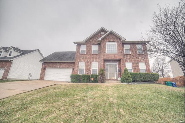 717 Donna Drive, O'Fallon, IL 62269 (#18024884) :: St. Louis Realty