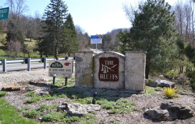 28 The Bluffs At Hoene Springs, Eureka, MO 63025 (#18026437) :: Sue Martin Team