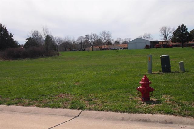 121 Grant Drive, Jonesburg, MO 63351 (#18026679) :: Sue Martin Team