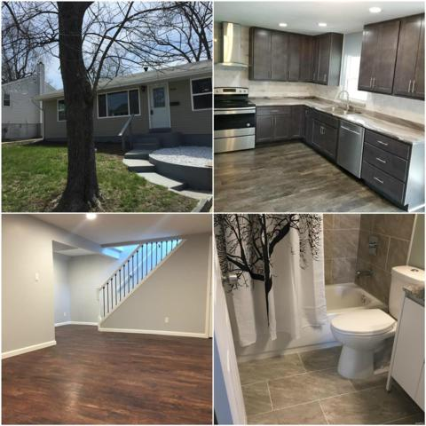 9448 Romaine Avenue, St Louis, MO 63114 (#18028112) :: Clarity Street Realty