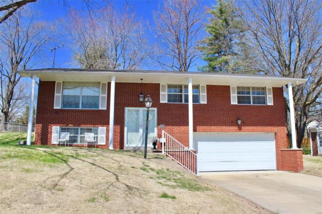 125 Lake Forest Drive, Belleville, IL 62220 (#18028355) :: Sue Martin Team