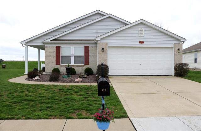 Belleville, IL 62220 :: Fusion Realty, LLC