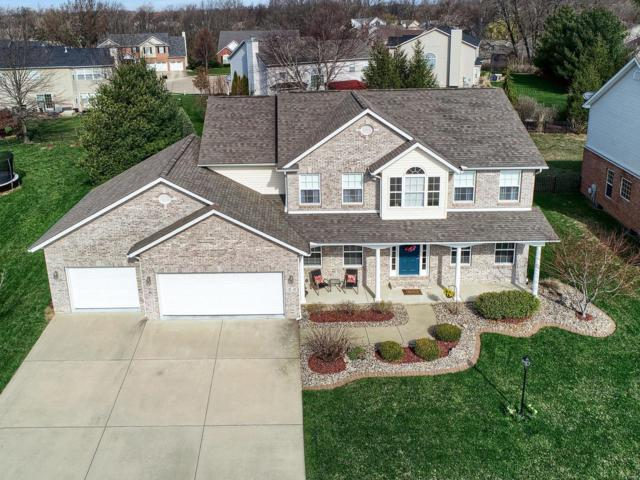 9 White Fang Drive, Glen Carbon, IL 62034 (#18029090) :: Fusion Realty, LLC