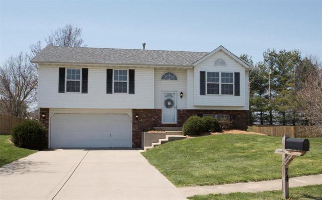 74 Arbor Springs, Troy, IL 62294 (#18029350) :: Fusion Realty, LLC