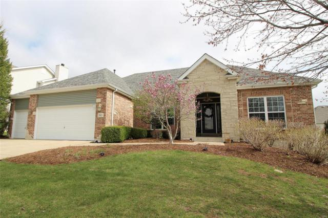 203 Vista Pointe Court, Saint Peters, MO 63376 (#18029852) :: St. Louis Realty