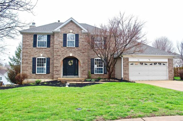 111 Waldens Oak Court, Ellisville, MO 63011 (#18029886) :: The Becky O'Neill Power Home Selling Team