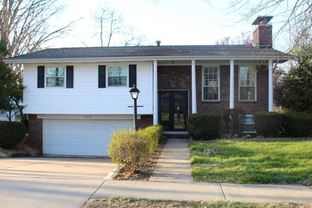 735 Yale Avenue, Edwardsville, IL 62025 (#18031586) :: Holden Realty Group - RE/MAX Preferred