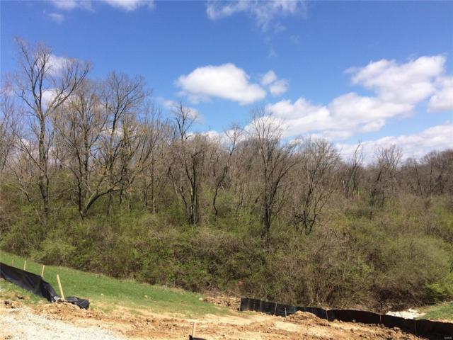 13030 Old Jamestown, Black Jack, MO 63033 (#18031648) :: PalmerHouse Properties LLC