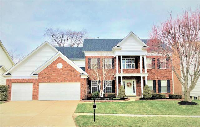 15587 Meadowbrook Circle Lane, Chesterfield, MO 63017 (#18031901) :: St. Louis Realty