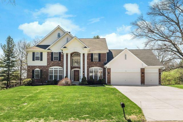 15 Haven View Drive, St Louis, MO 63141 (#18031960) :: Clarity Street Realty