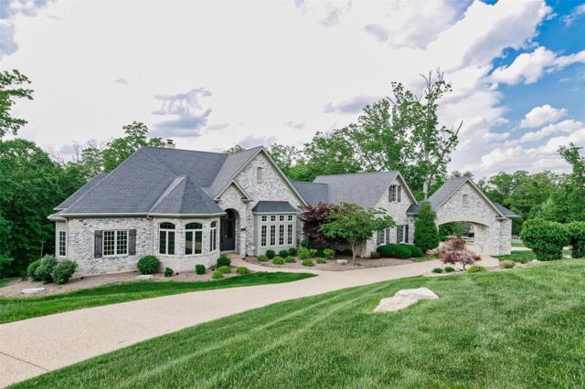 119 Grand Meridien Forest Drive, Wildwood, MO 63005 (#18033064) :: The Kathy Helbig Group
