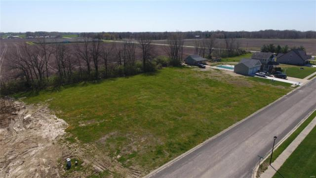 145 W Timberview Drive, STAUNTON, IL 62088 (#18033656) :: PalmerHouse Properties LLC