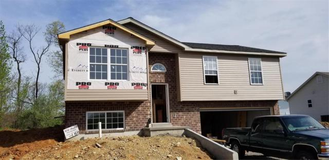 724 Hawks Circle Drive, Hillsboro, MO 63050 (#18033948) :: Sue Martin Team