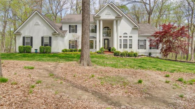 18130 Country Trails Court, Wildwood, MO 63038 (#18035285) :: Sue Martin Team
