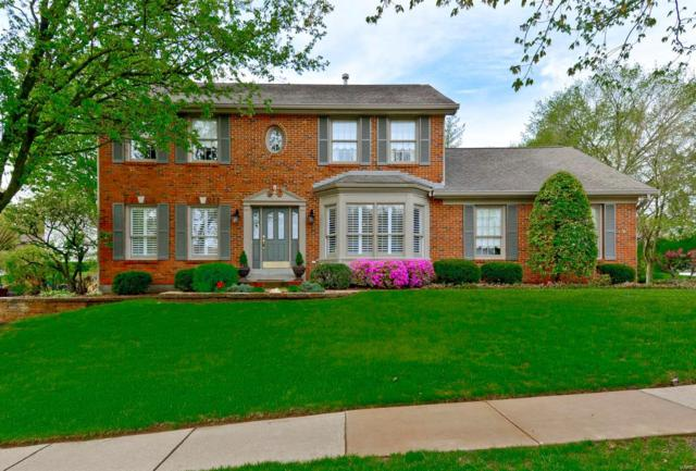 940 Lynwood Forest Drive, Manchester, MO 63021 (#18035586) :: Sue Martin Team