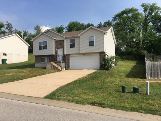 815 Riverview Drive, Pevely, MO 63070 (#18035957) :: Team Cort