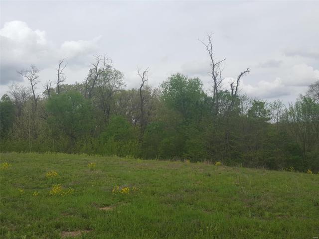 17917 Homestead Bluffs, Wildwood, MO 63005 (#18036558) :: Hartmann Realtors Inc.