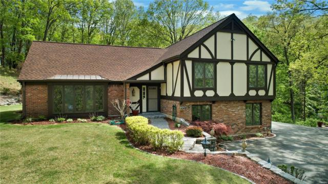 1193 Briar Patch Road, Ellisville, MO 63021 (#18036669) :: The Kathy Helbig Group