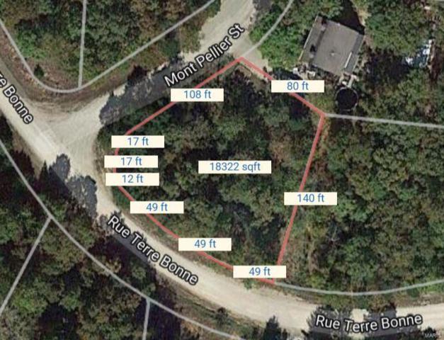 23 Mont Pellier, Bonne Terre, MO 63628 (#18037953) :: St. Louis Finest Homes Realty Group
