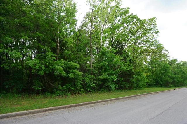 0 Columbia Avenue Lot 20, Rolla, MO 65401 (#18039513) :: The Becky O'Neill Power Home Selling Team