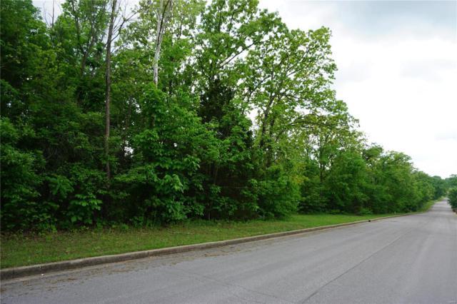 0 Columbia Avenue Lot 22, Rolla, MO 65401 (#18039520) :: Jeremy Schneider Real Estate