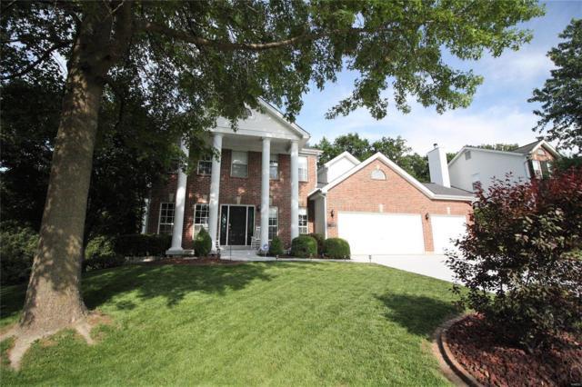 143 Tennessee Walker Way, Saint Peters, MO 63376 (#18039658) :: Barrett Realty Group