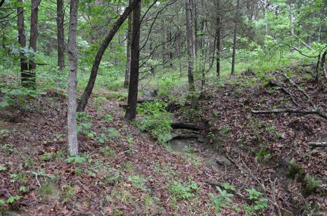 3 Mossy Ridge Way, Pacific, MO 63069 (#18039798) :: RE/MAX Vision