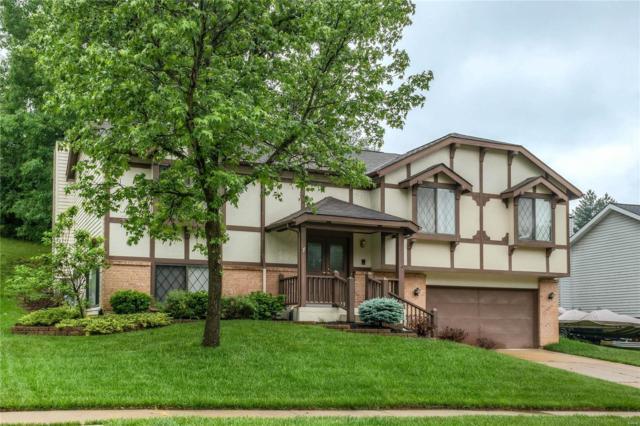 113 Apostle Circle, Fenton, MO 63026 (#18040401) :: PalmerHouse Properties LLC