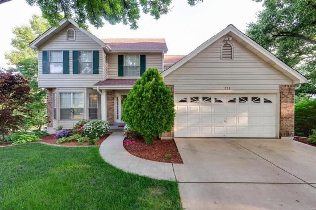 238 Westridge Parc Lane, Ellisville, MO 63021 (#18040526) :: The Becky O'Neill Power Home Selling Team