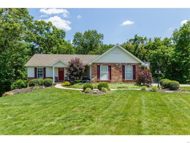 125 Starview Drive, Troy, MO 63379 (#18040607) :: PalmerHouse Properties LLC