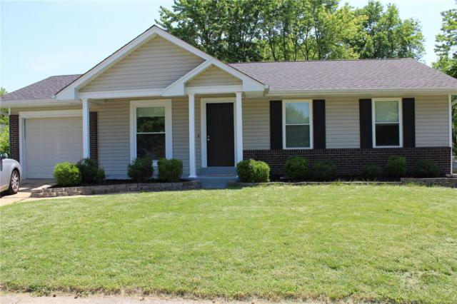 11950 Meadow Grove Court, Maryland Heights, MO 63043 (#18040944) :: RE/MAX Vision