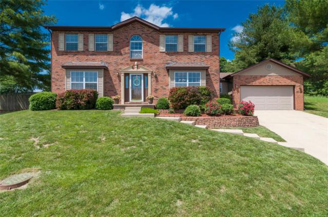 1409 Plum Tree Court, O'Fallon, IL 62269 (#18041075) :: PalmerHouse Properties LLC